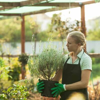Woman holding a potted plant in a nursery | Garden center marketing ideas